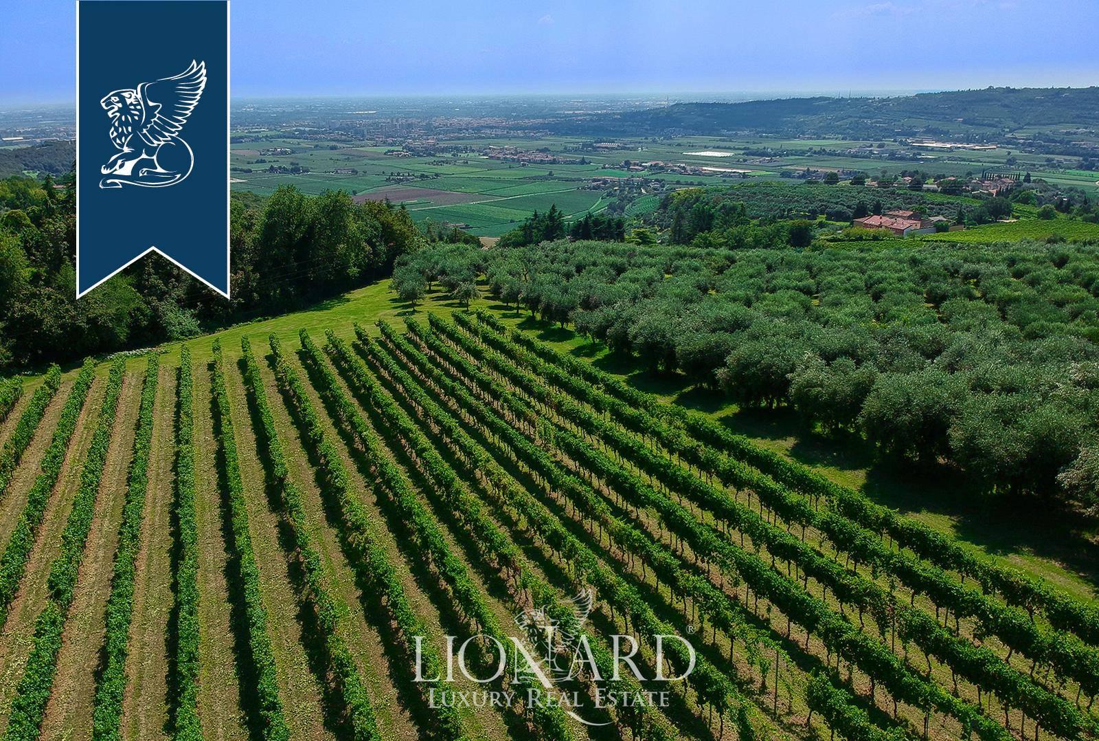 Villa in Vendita a Verona: 0 locali, 1000 mq - Foto 9