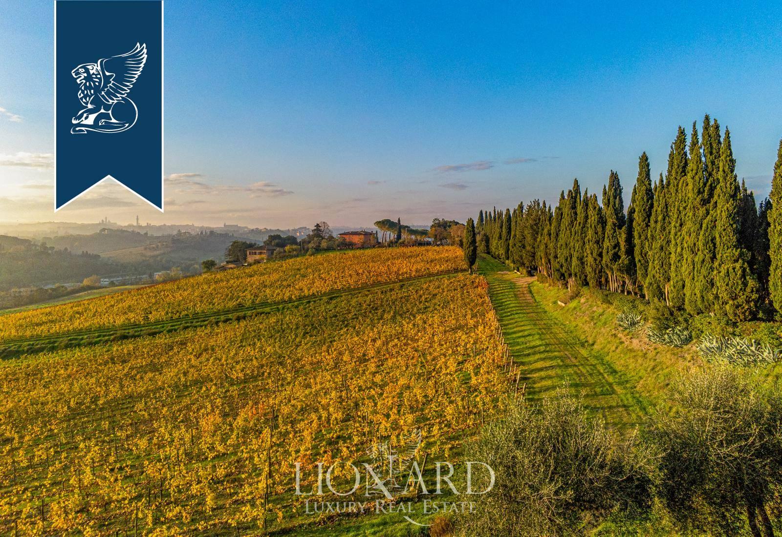 Villa in Vendita a Siena: 0 locali, 3000 mq - Foto 8