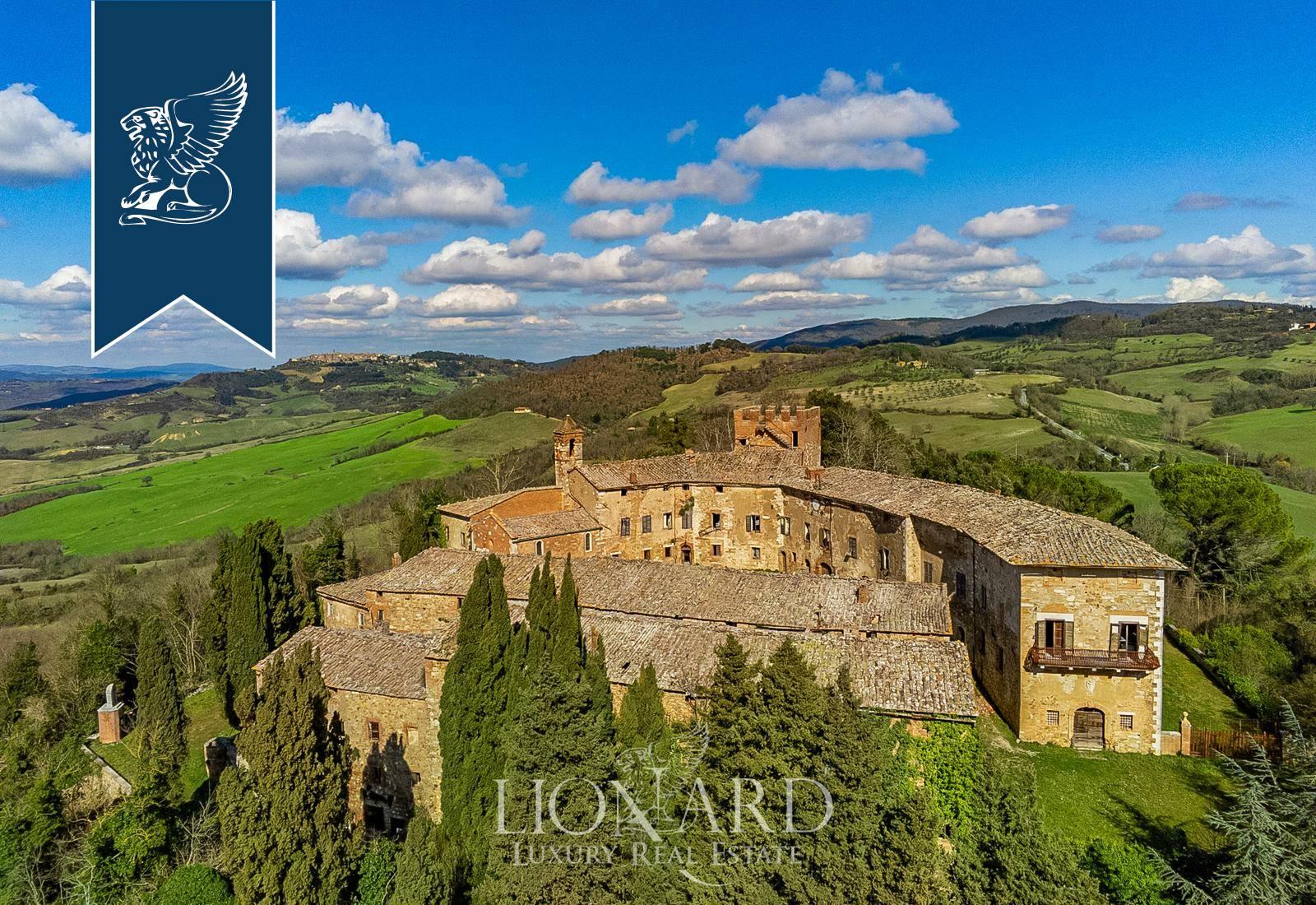 Azienda in Vendita a Radicondoli: 0 locali, 15400 mq - Foto 3