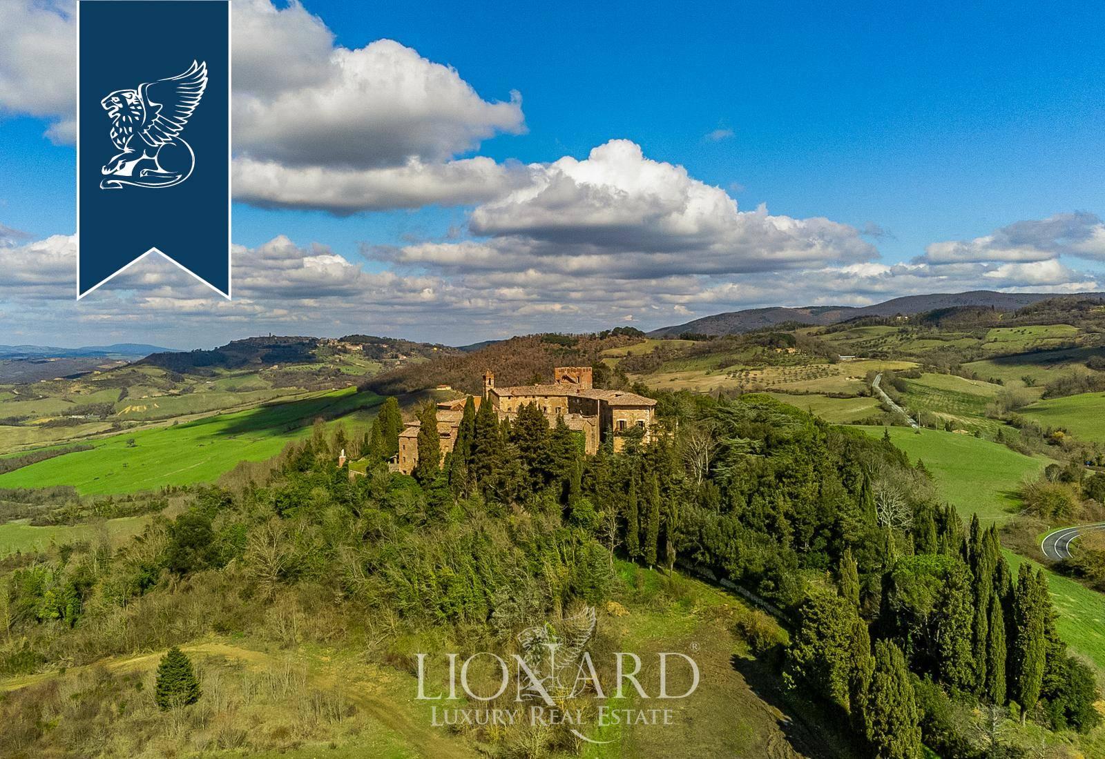 Azienda in Vendita a Radicondoli: 0 locali, 15400 mq - Foto 6