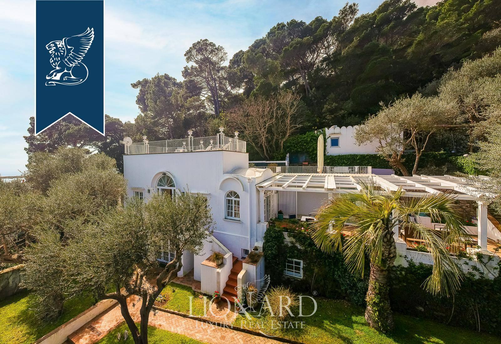 Villa in Vendita a Capri: 0 locali, 250 mq - Foto 4