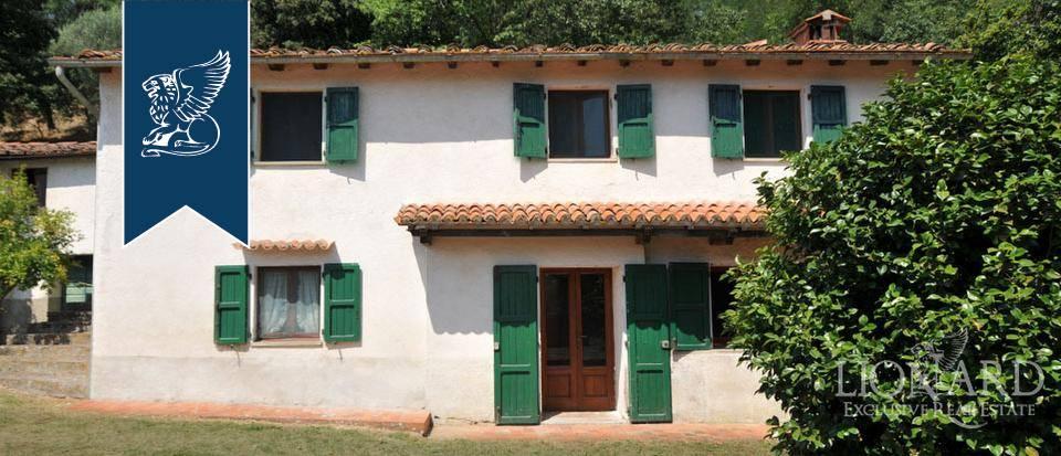Azienda in Vendita a Pescia: 0 locali, 800 mq - Foto 6