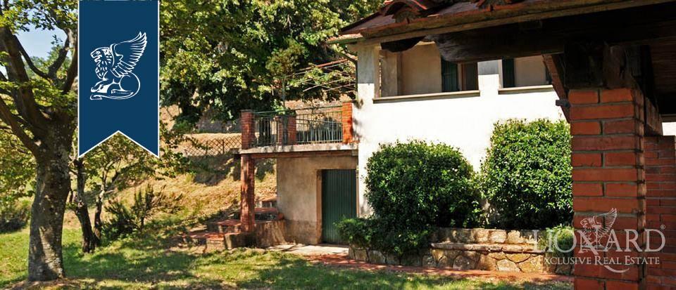 Azienda in Vendita a Pescia: 0 locali, 800 mq - Foto 7