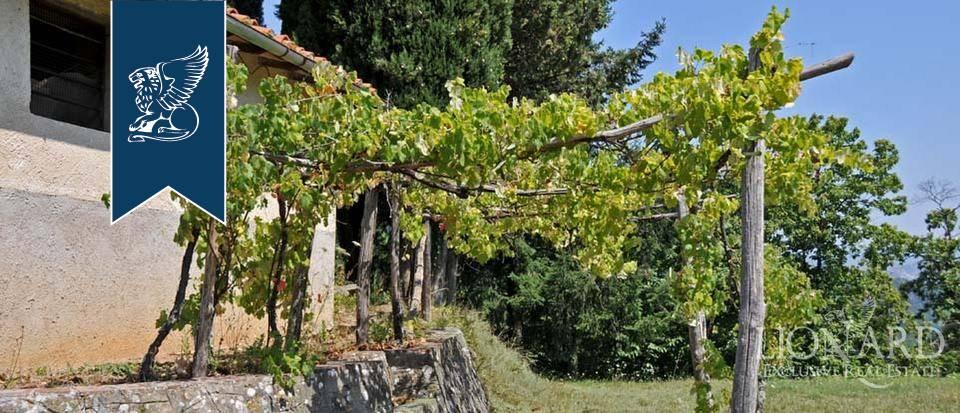 Azienda in Vendita a Pescia: 0 locali, 800 mq - Foto 8