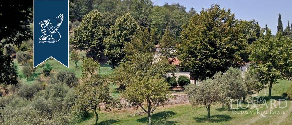 Azienda in Vendita a Pescia: 800 mq