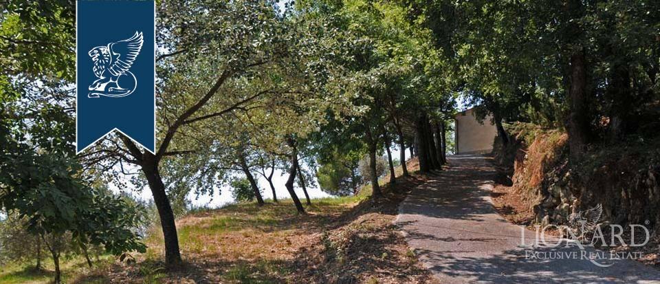 Azienda in Vendita a Pescia: 0 locali, 800 mq - Foto 9
