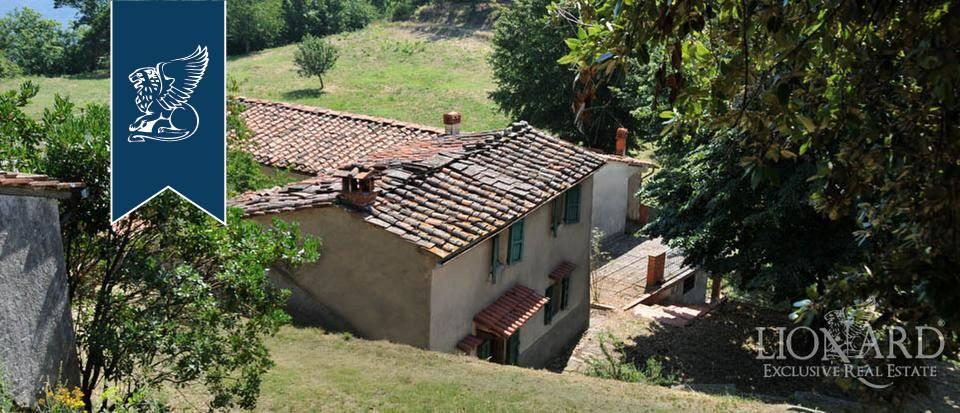 Azienda in Vendita a Pescia: 0 locali, 800 mq - Foto 3