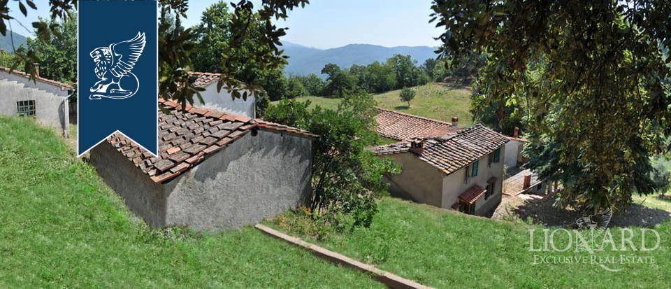 Azienda in Vendita a Pescia: 0 locali, 800 mq - Foto 1