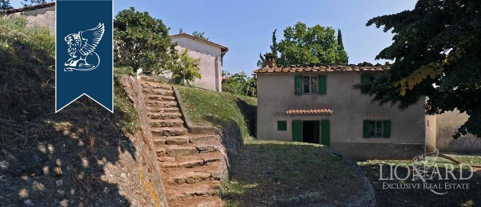 Azienda in Vendita a Pescia: 0 locali, 800 mq - Foto 5