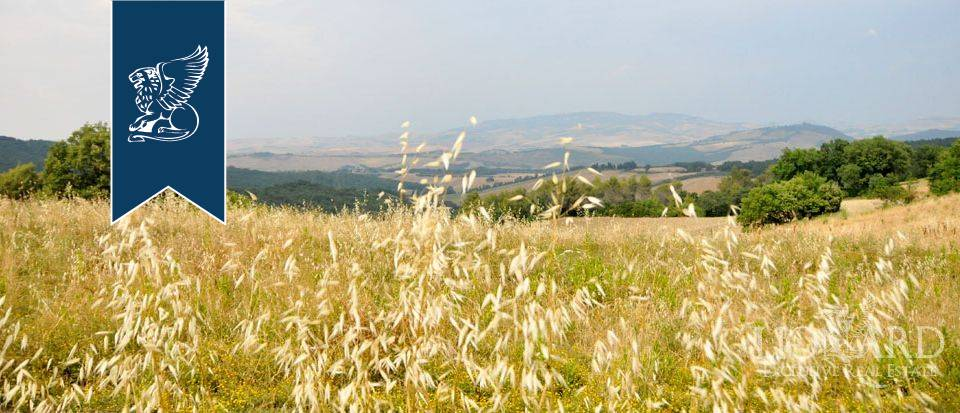 Agriturismo in Vendita a Pomarance: 0 locali, 320 mq - Foto 2