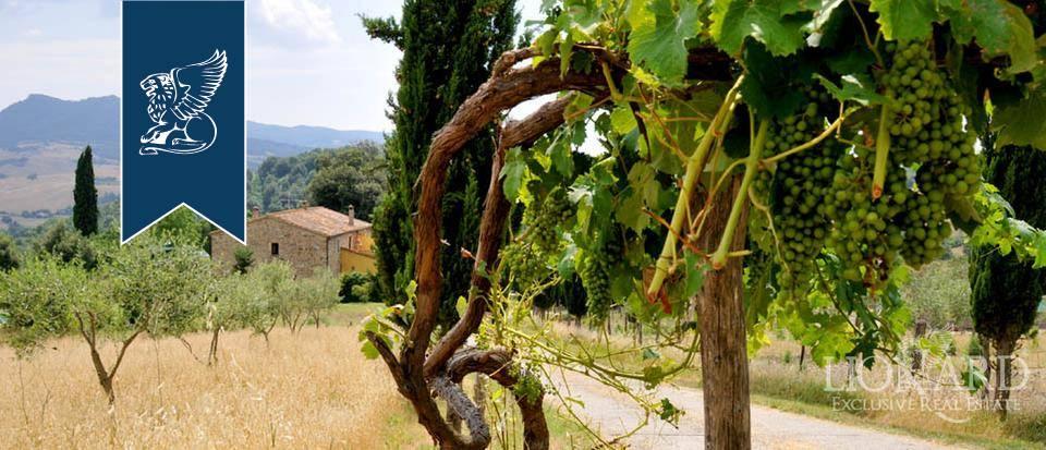 Agriturismo in Vendita a Pomarance: 0 locali, 320 mq - Foto 3