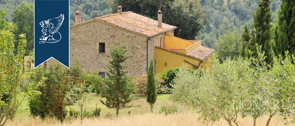 Agriturismo in Vendita a Pomarance: 0 locali, 320 mq - Foto 4