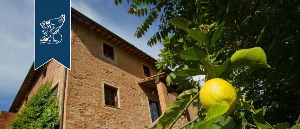 Agriturismo in Vendita a Palaia: 0 locali, 900 mq - Foto 9