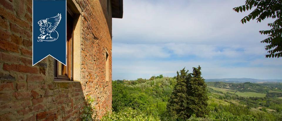 Agriturismo in Vendita a Palaia: 0 locali, 900 mq - Foto 7
