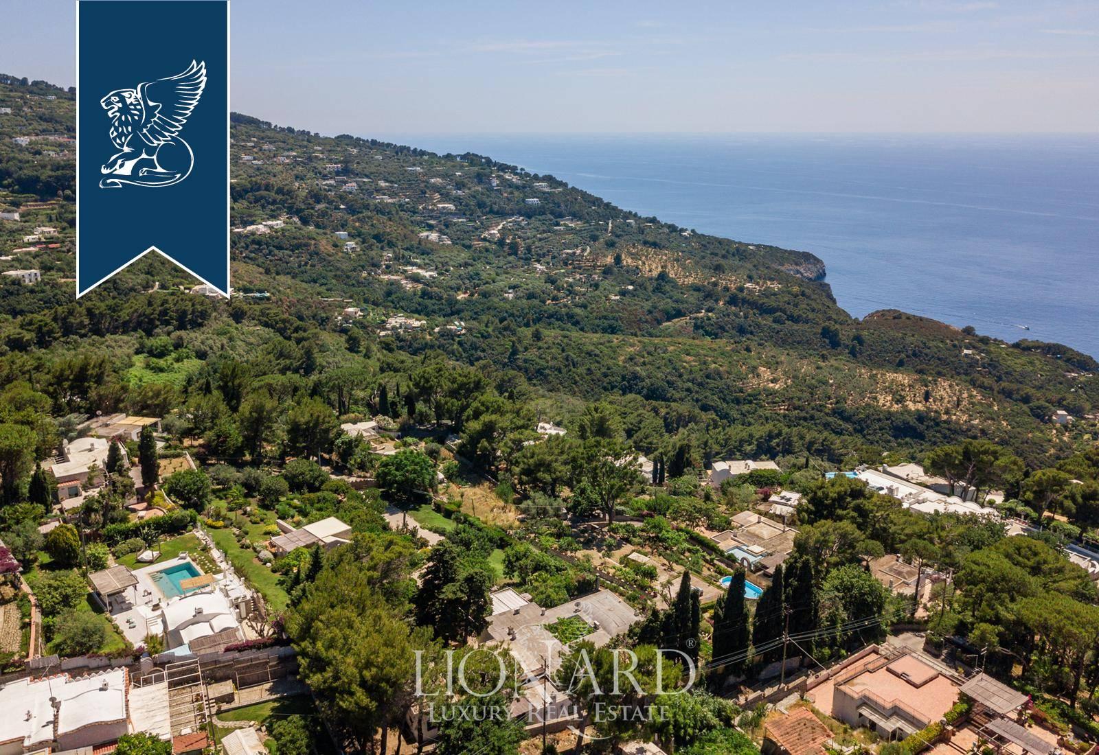 Villa in Vendita a Anacapri: 0 locali, 400 mq - Foto 5