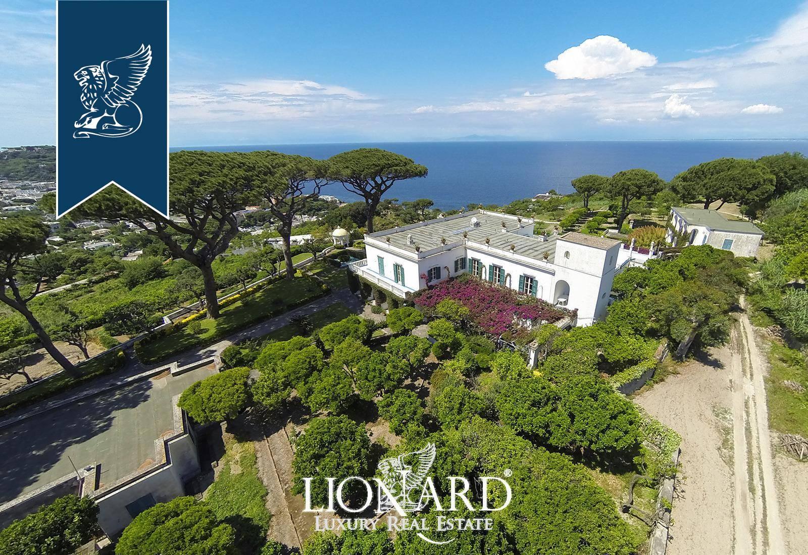 Villa in Vendita a Ischia: 0 locali, 2200 mq - Foto 7