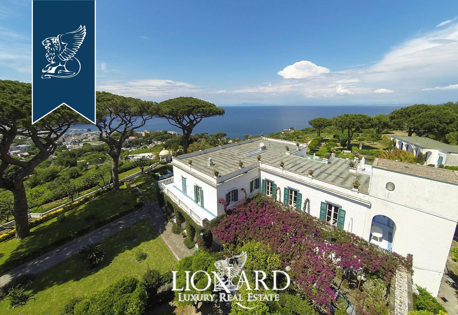 Villa in Vendita a Ischia: 0 locali, 2200 mq - Foto 8