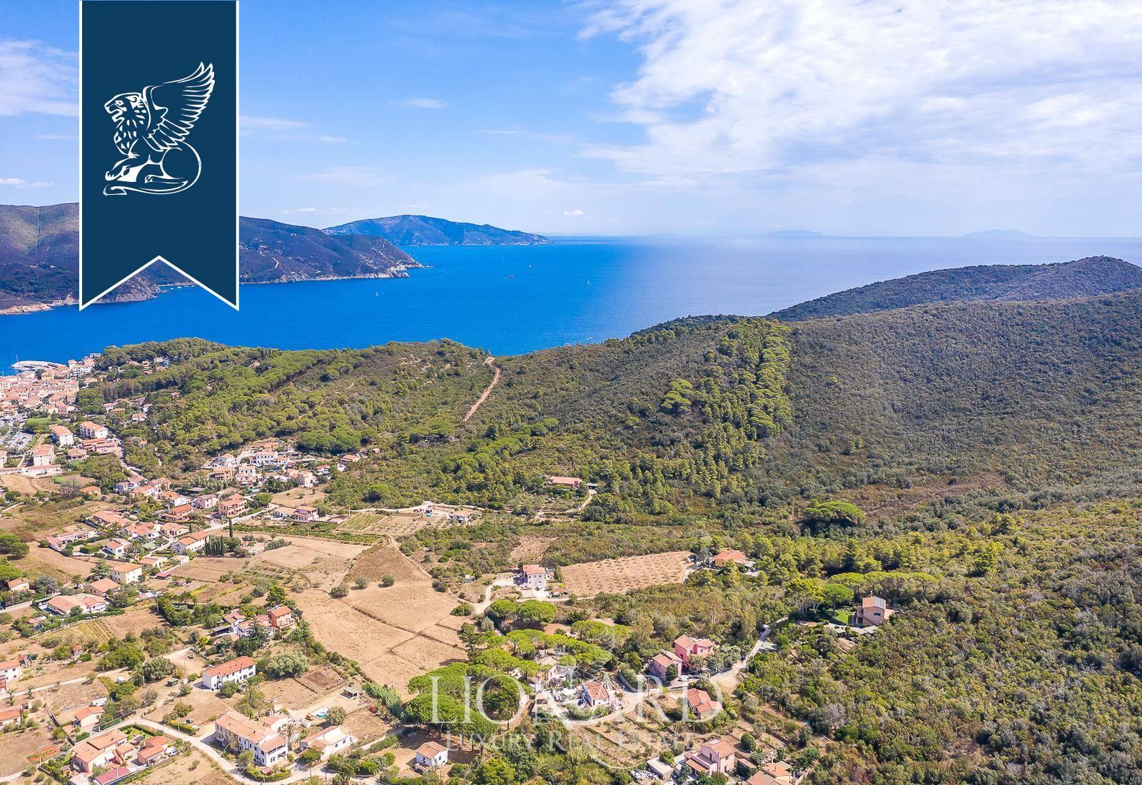 Villa in Vendita a Campo Nell'Elba: 0 locali, 300 mq - Foto 3