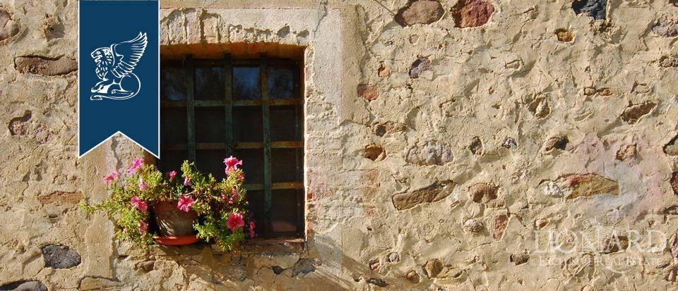 Rustico in Vendita a Grosseto: 0 locali, 900 mq - Foto 5