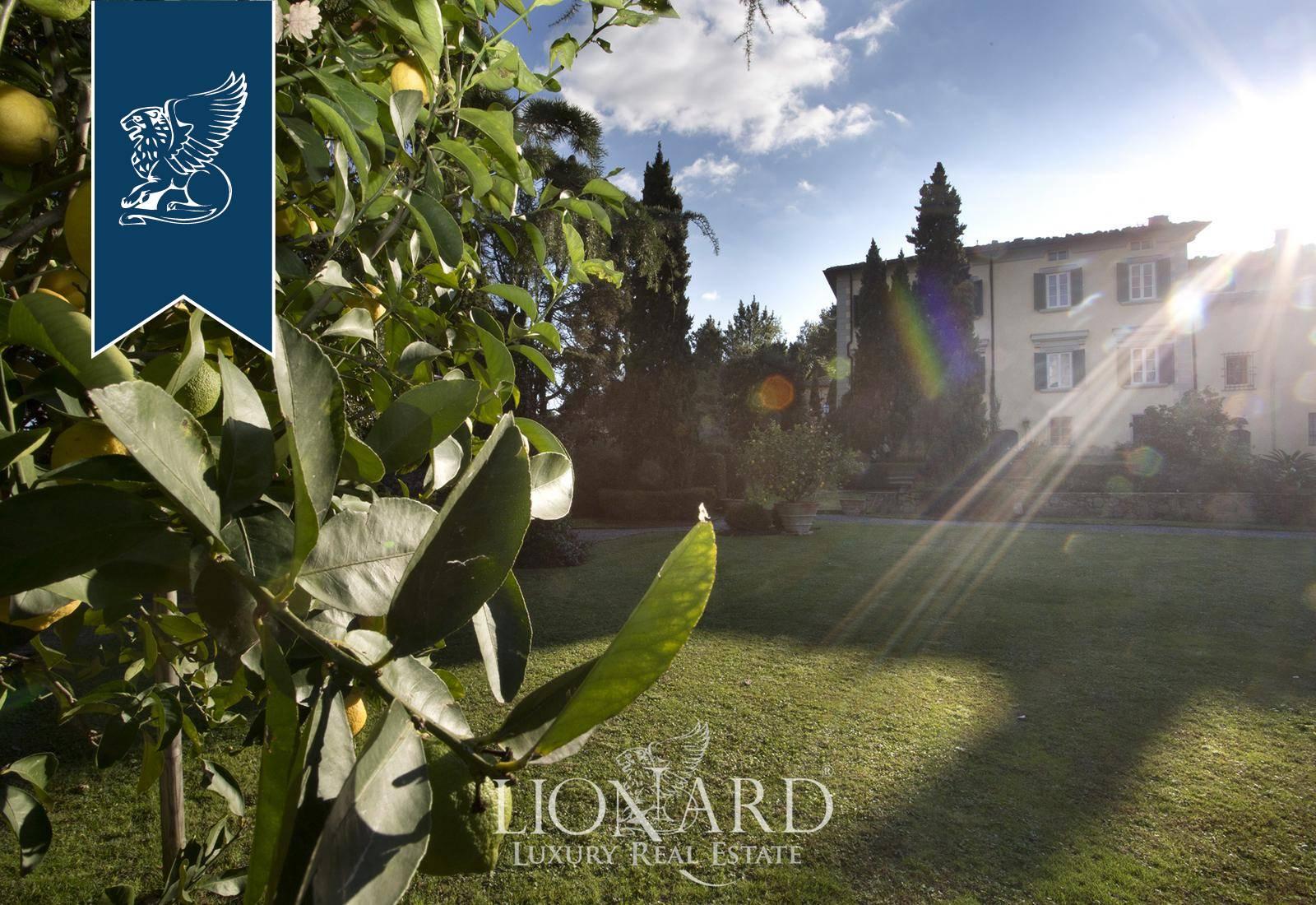 Villa in Vendita a Camaiore: 0 locali, 800 mq - Foto 3