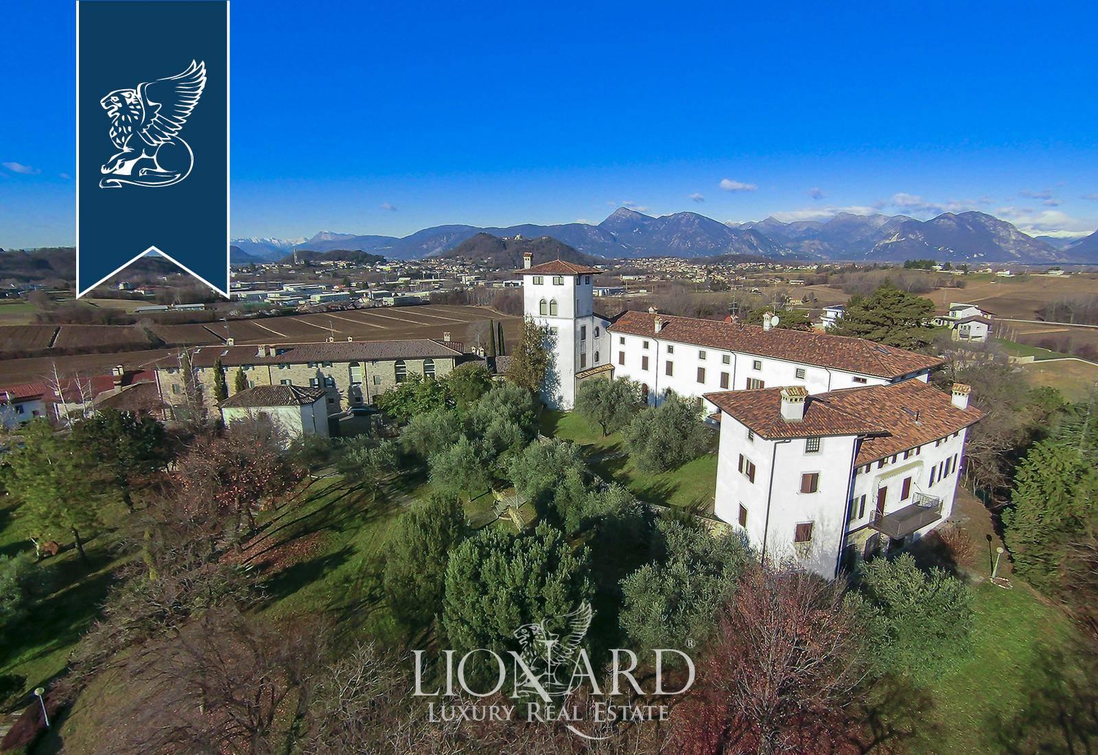 Villa in Vendita a Treppo Grande: 0 locali, 2000 mq - Foto 6