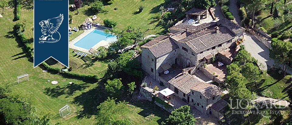 Agriturismo in Vendita a Castellina In Chianti