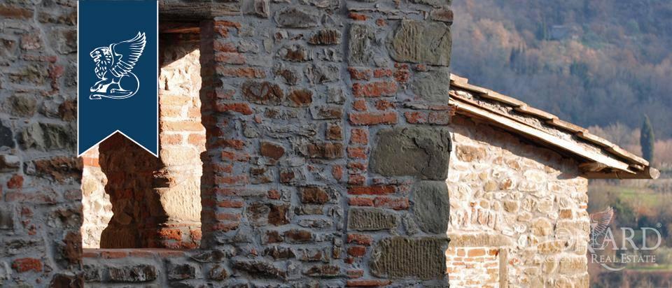 Albergo in Vendita a Greve In Chianti: 0 locali, 5000 mq - Foto 4