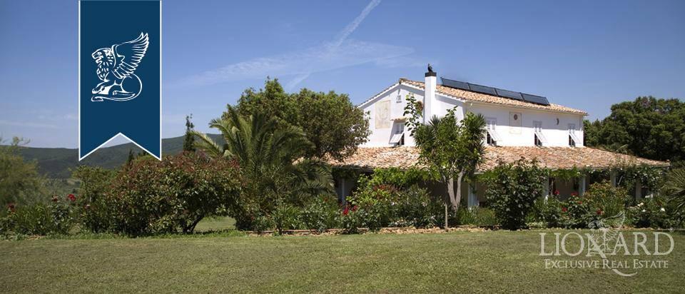 Villa in Vendita a Rosignano Marittimo: 0 locali, 400 mq - Foto 2