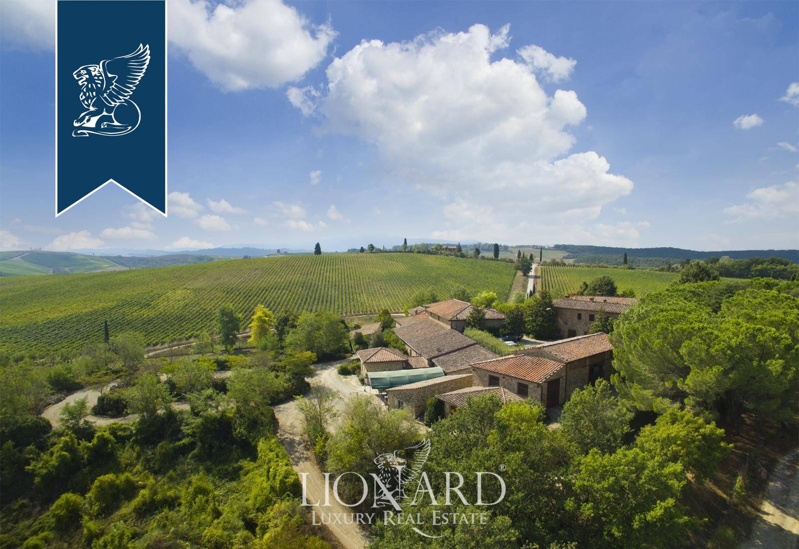Azienda in Vendita a Castellina In Chianti: 0 locali, 6000 mq - Foto 3
