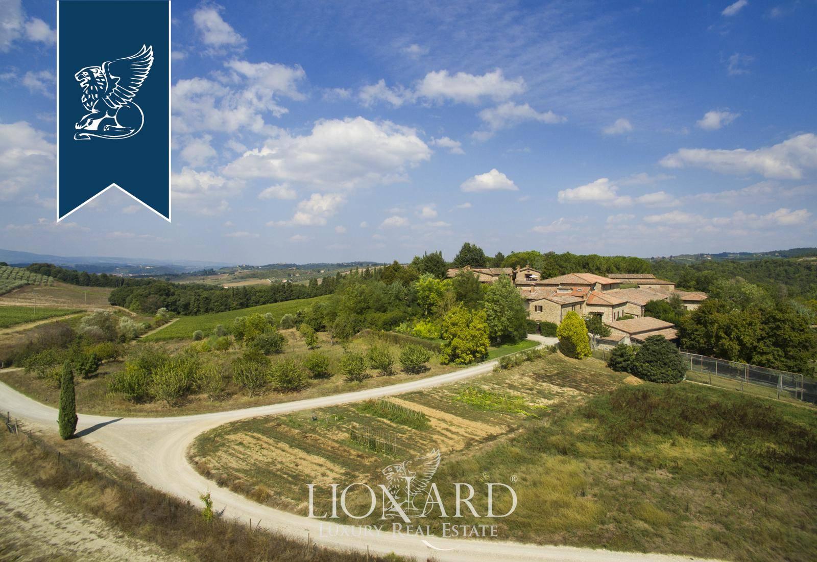 Azienda in Vendita a Castellina In Chianti: 0 locali, 6000 mq - Foto 6
