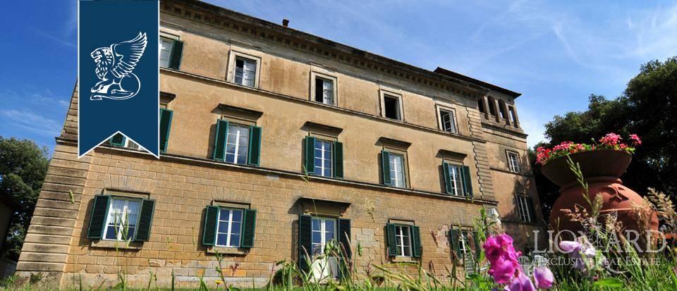 Villa in Vendita a Fauglia: 0 locali, 900 mq - Foto 3