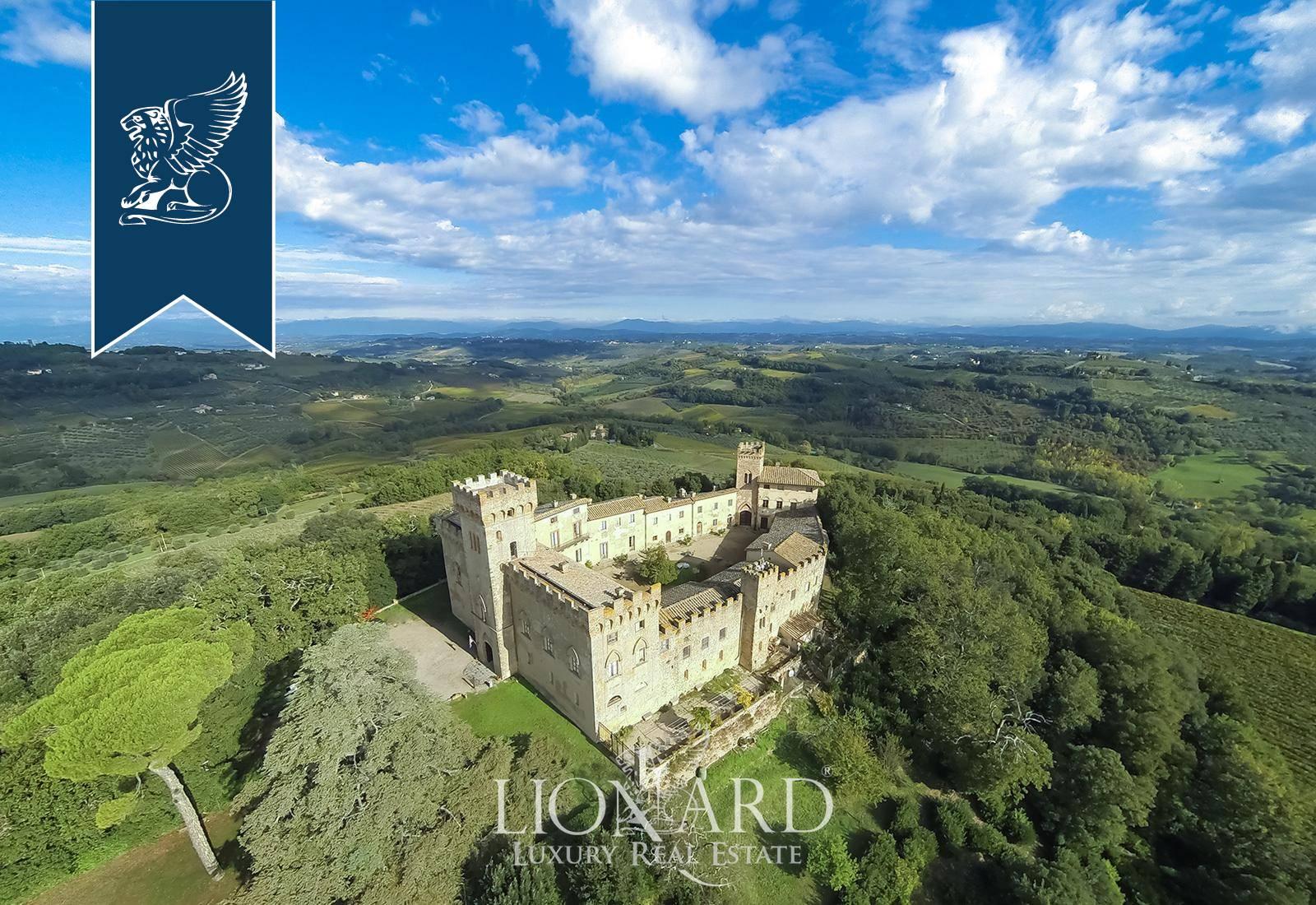 Villa in Vendita a Certaldo: 0 locali, 5000 mq - Foto 7