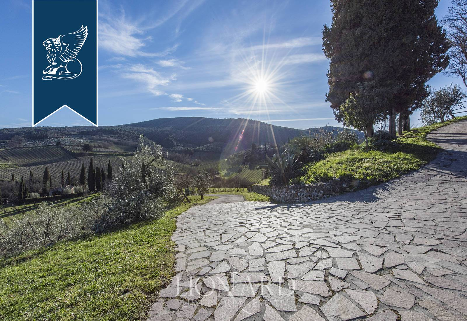 Azienda in Vendita a San Gimignano: 0 locali, 660 mq - Foto 7