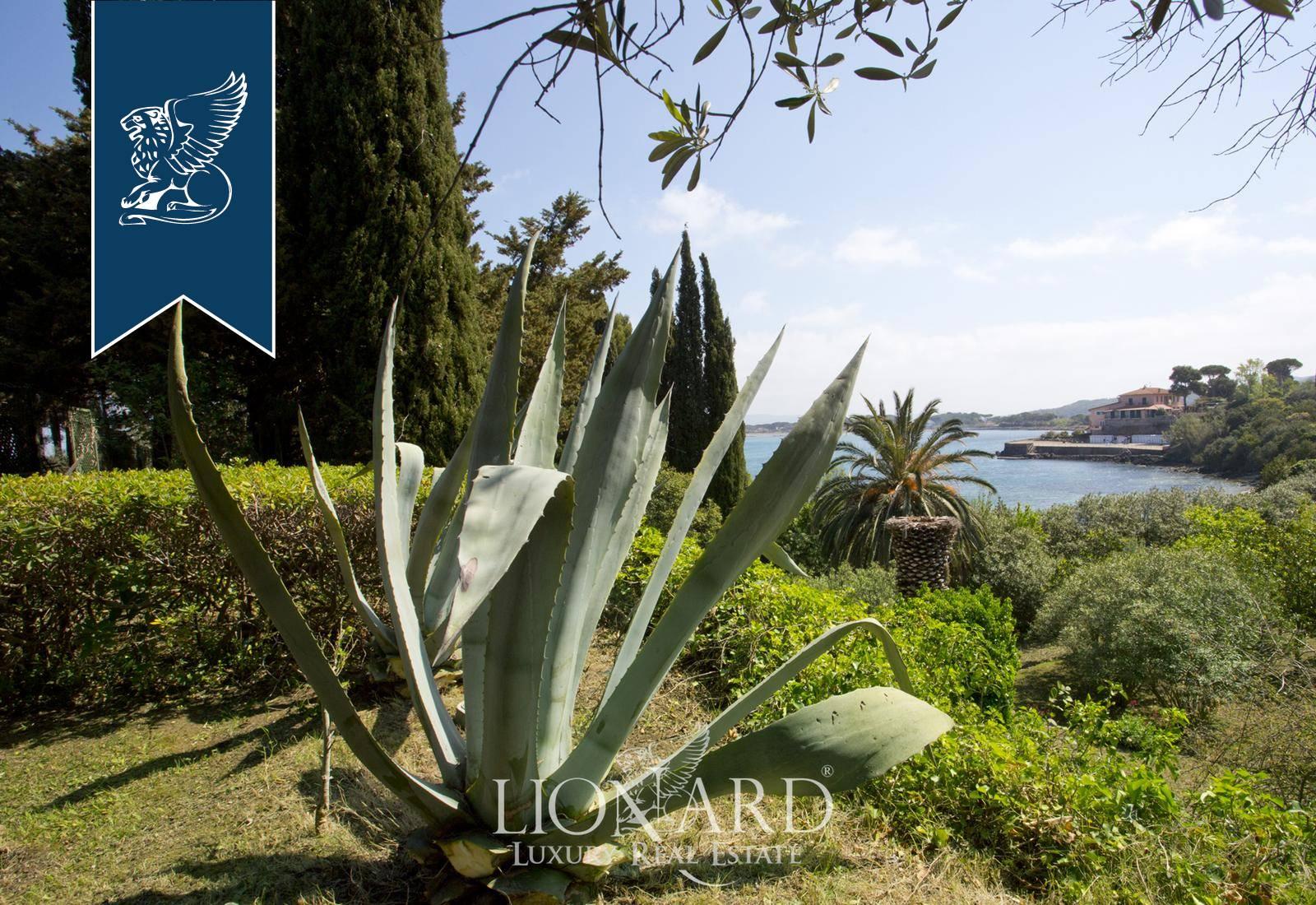 Villa in Vendita a Monte Argentario: 0 locali, 320 mq - Foto 9