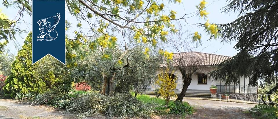 Villa in Vendita a Tuoro Sul Trasimeno
